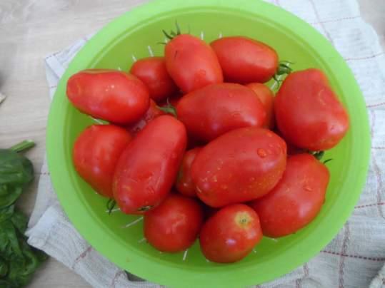 sauce tomate1