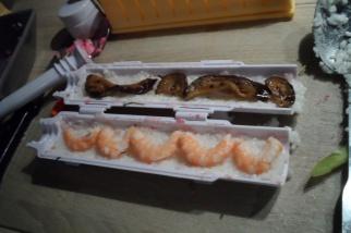 sushi bazooka11